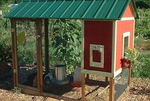Chicken houses / Design ideas for Chicken houses, hen houses or chook houses