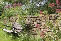 """Menjünk haza, üljünk le a diófa alatt / """"Már nem vágyom semmi másra, csak egy kertre, ahol szeptemberi délelőtt fedetlen fővel lehet üldögélni egy diófa alatt. Az ember a végén csak közhelyekre vágyik. A kert közhely; menjünk haza, üljünk le a diófa alatt."""" (Márai Sándor: Ég és Föld/A kert)  Képek, hangulatok, inspirációk a verőcei kerthez."""