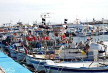 Visites al Port de Pesca / Fishing harbour Tours