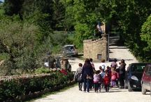 Life experiences in a farm... even this is Villa Dama! / A special day in our farm with a group of children...
