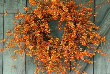 WREATHS/DOOR DECOR / by Phyllis Skehan
