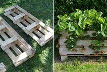 Działka/ogród