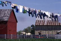 Amish Life / by Eileen Miller