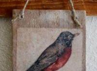 Birds / by Renita Prater
