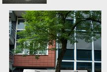 research_mome