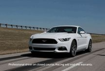 Mustang Domination