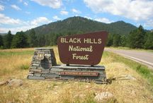 Welcome to the Black Hills / Things to do and see in the Black Hills