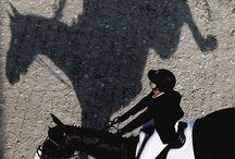 Longines Horse Racing