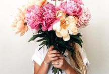 Blooms //