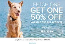 Best Pet Deals