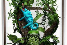 chameleon變色龍