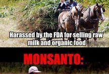 GMOs booo! / by Brandy Salerno