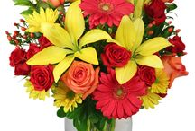 Flower Delivery Fort Worth / Fort Worth Flower Shop, Florist Fort Worth, Fort Worth Florist, Fort Worth Florists, Florist in Fort Worth, Flower Delivery Fort Worth, Fort Worth Flower Delivery, Flower Delivery Fort Worth TX, Flower Delivery in Fort Worth TX, Flower Delivery in Fort Worth