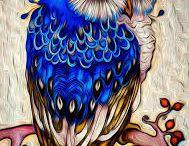 ptáki