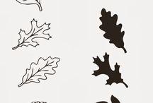 podzimní kouzlení