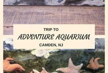 South Jersey/ Philadelphia Things to do