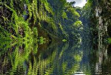 přírodní krása