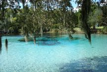 Florida places to go