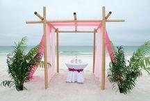 A Magenta Beach Wedding