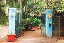 Bohemyan Blue / A quaint little cafe in the small island of Alibaug, Maharashtra. Pretty ambiance with organic elements. Lovely fresh food and wonderful music. A perfect place to spend your weekend. Nature and greenery at it's best.