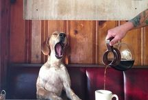 Smile Coffee / Te invitamos a conocer todos nuestros recortes Good Morning en nuestra web http://www.cafescaballoblanco.com/blog/smile-coffee/