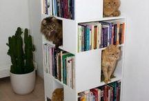 고양이 타워