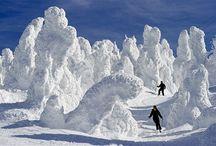 ski and snowbaord