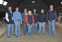Sales and Shows / by HolsteinWorld DairyBusiness