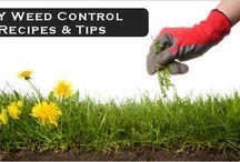 Household useful tips