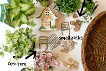 Fairy gardens / Ideas and inspiration for creating tiny fairies gardens in your own backyard or container space.