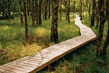 passeggiata in legno