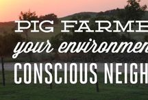 Pig Farming / Pig farmers have a mission to produce safe, nutritious food in a responsible manner. Here are a few ways farmers ensure you are putting the best possible pork on your plate. 