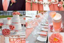 korall wedding