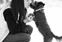 dog/puppy & accessories
