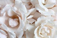 Inspire - bridal
