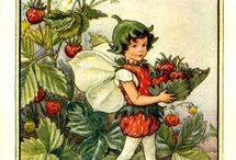 Berries & cherries, etc.