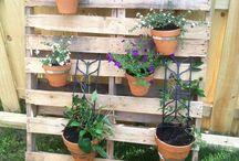 Gardening / by adrienne wat