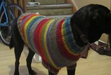 Dog sweaters / I'm looking for dog sweaters for large breeds
