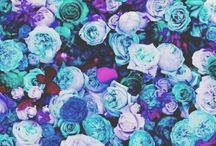 •{Wallpapers flores}•