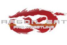 Dragon Gate Pro-Wrestling