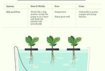Future planter