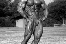 Golden Era Bodybuilding