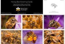 Honeybee Goodies