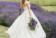 Lavender Fields Wedding Styled Shoot / This board highlights pictures from a wedding styled shoot with Betty Elaine Photography at Jardin Del Soleil lavender fields.