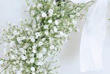 Wreaths~