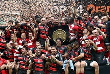Rugby / Stade Toulousain