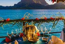 meal views