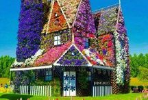 lovely house