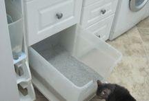 Kitty litter organization