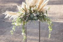 The Pampas Grass Trend